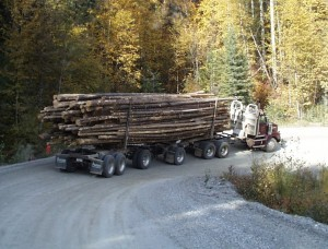 Law Firm Representing Victims of Log Carrying Truck Accidents