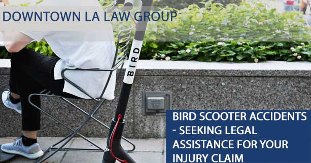 Bird Scooter Accidents: Common Causes