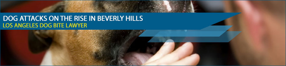 Dog Attacks on the Rise in Beverly Hills